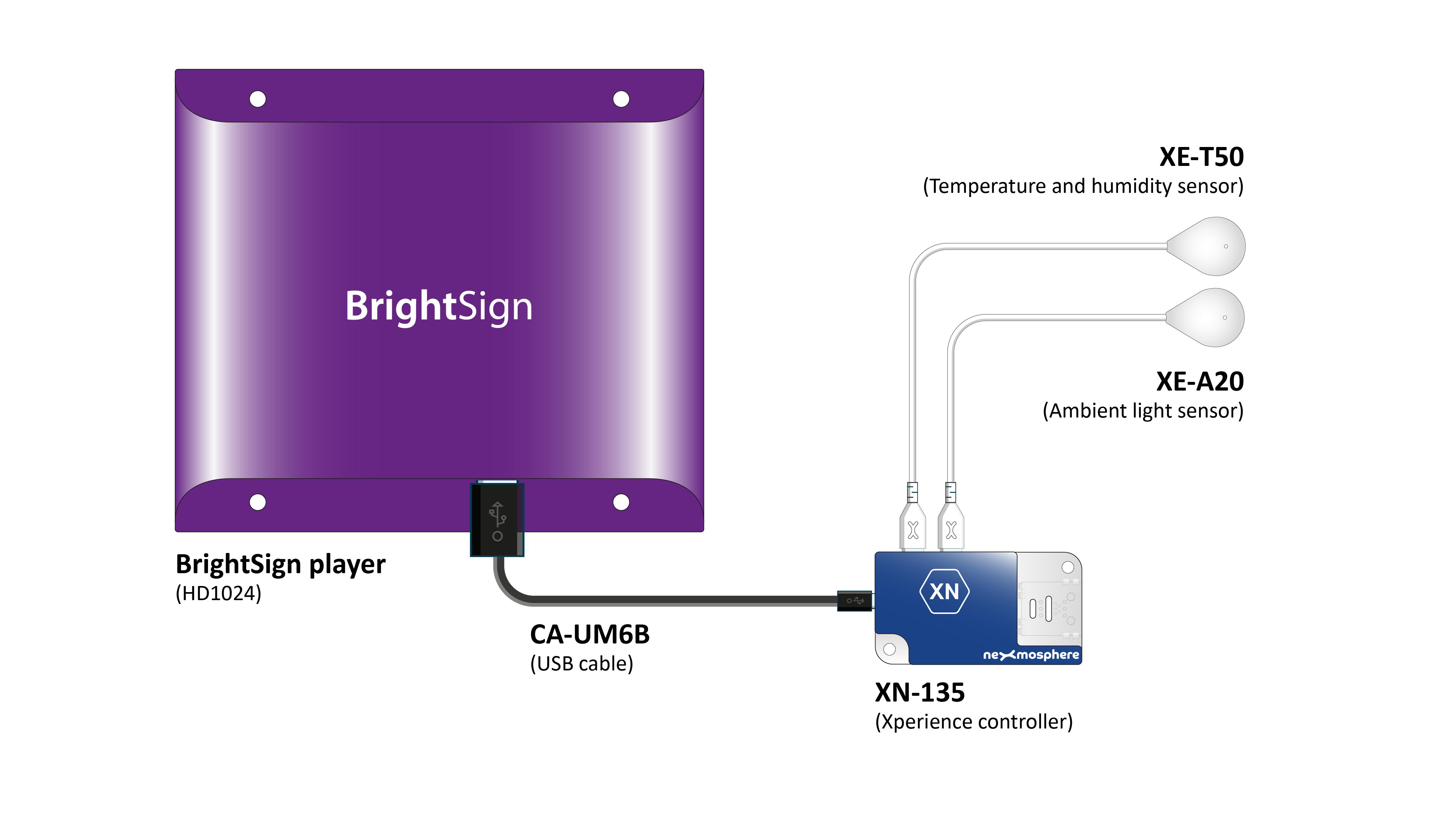 temperature-sensor-and-ambient-light-sensor